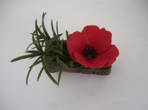 poppy france 1
